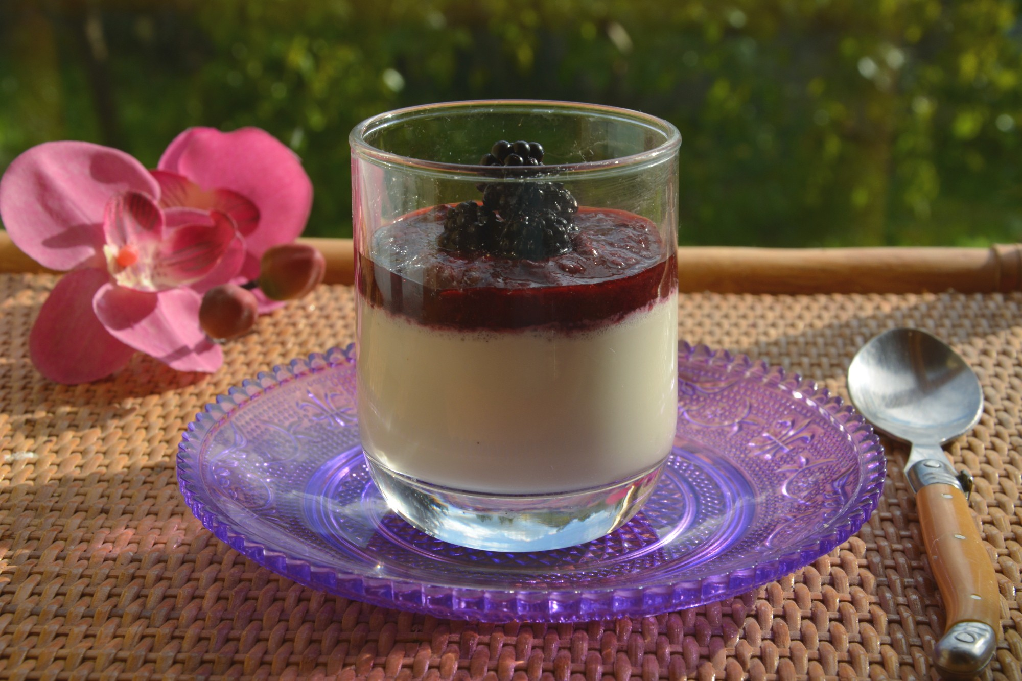 Pana cotta vanille et coulis de mûres