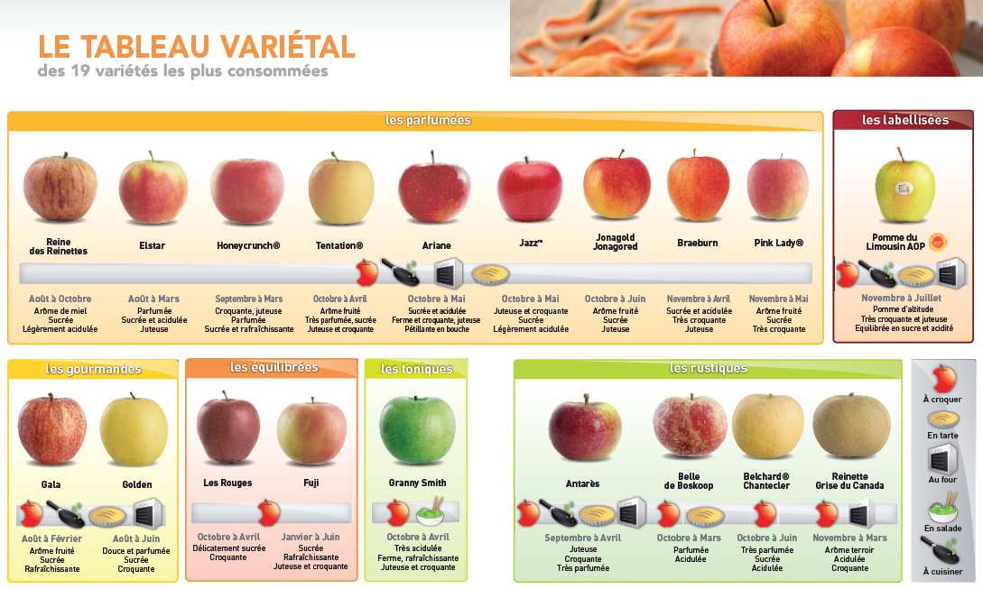 Astuces pour choisir la vari t de pommes au fil du thym - Variete pomme de terre rouge ...