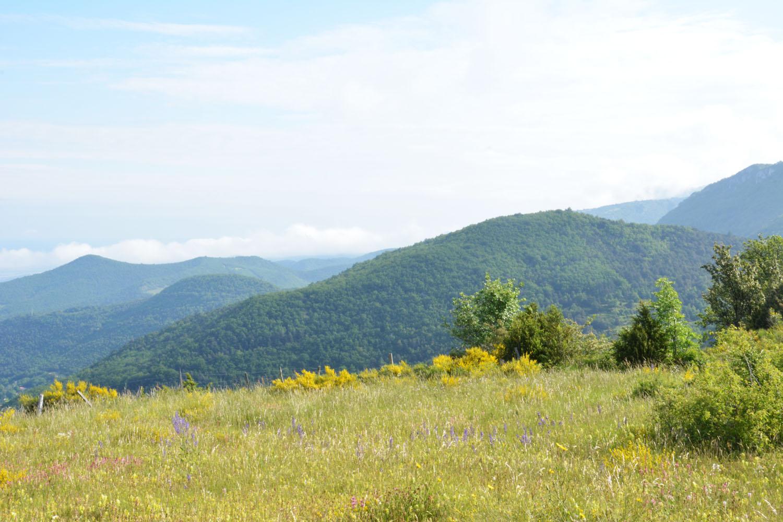 Une journée d'été au pied du Vercors