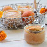 Petits pots de yaourt glacé aux abricots et miel