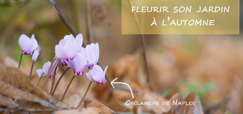 Idées Fleurs automne Jardin // Au Fil du Thym