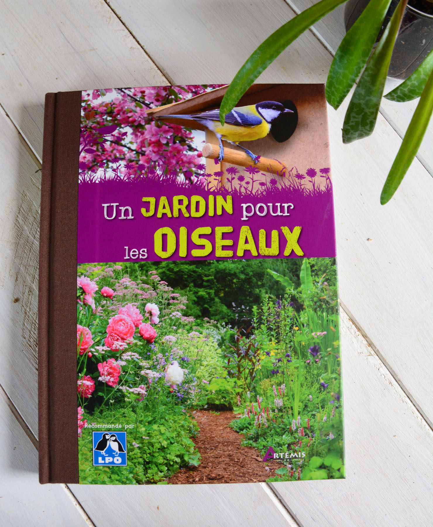 {Livre} Un jardin pour les oiseaux