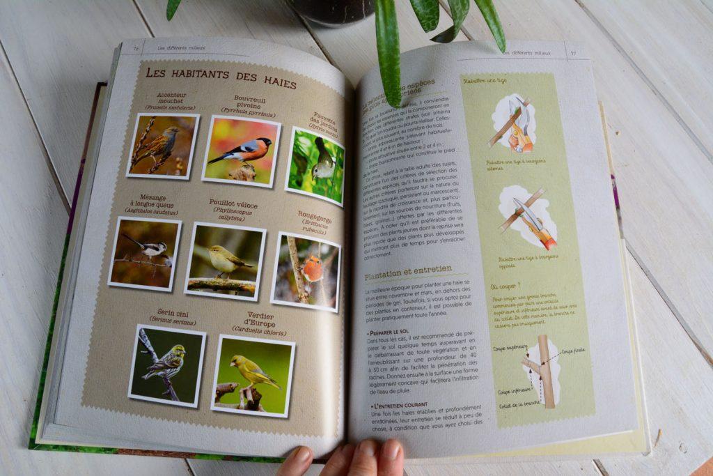 livre_oiseaux_exemple1