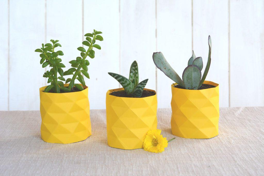 DIY succulentes ananas / DIY facile pour transformer de petites succulentes en simili ananas !