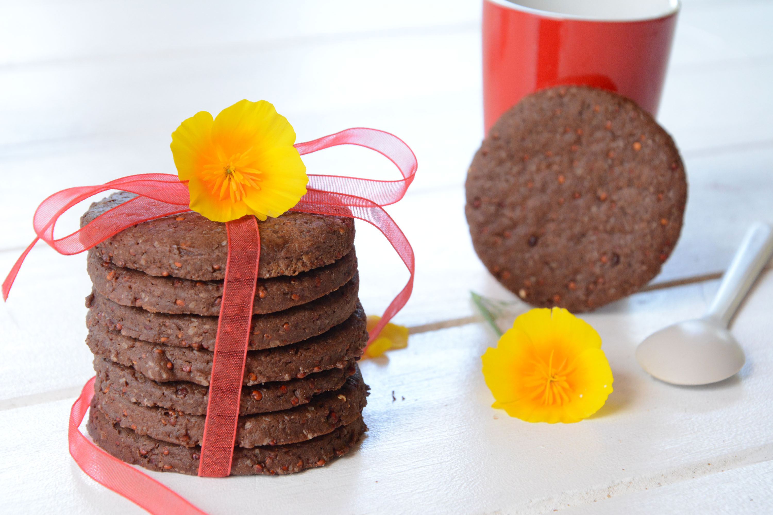 Biscuits cacao quinoa (sains et gourmands)
