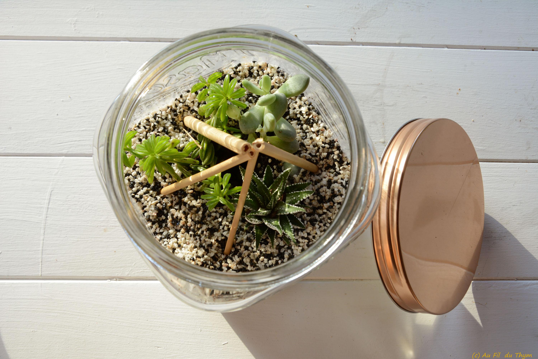 diy un terrarium succulentes dans un bocal au fil du thym. Black Bedroom Furniture Sets. Home Design Ideas