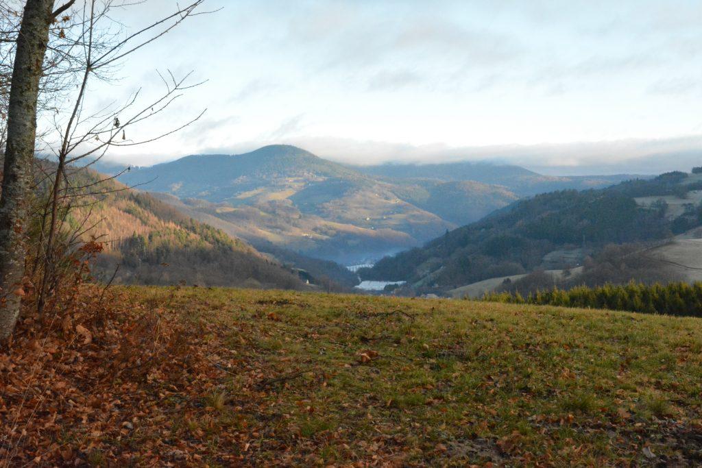 Vue sur la vallée de Kaysersberg au petit matin