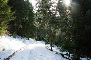 astuces promenades hiver - Astuces pour se balader par grand froid en toute sécurité