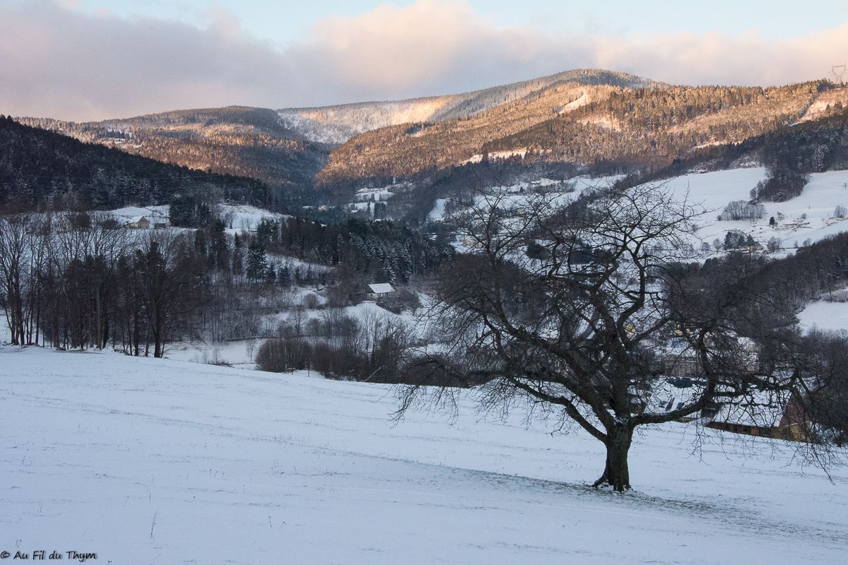 Escapade aux Merveilleuses Vosges…