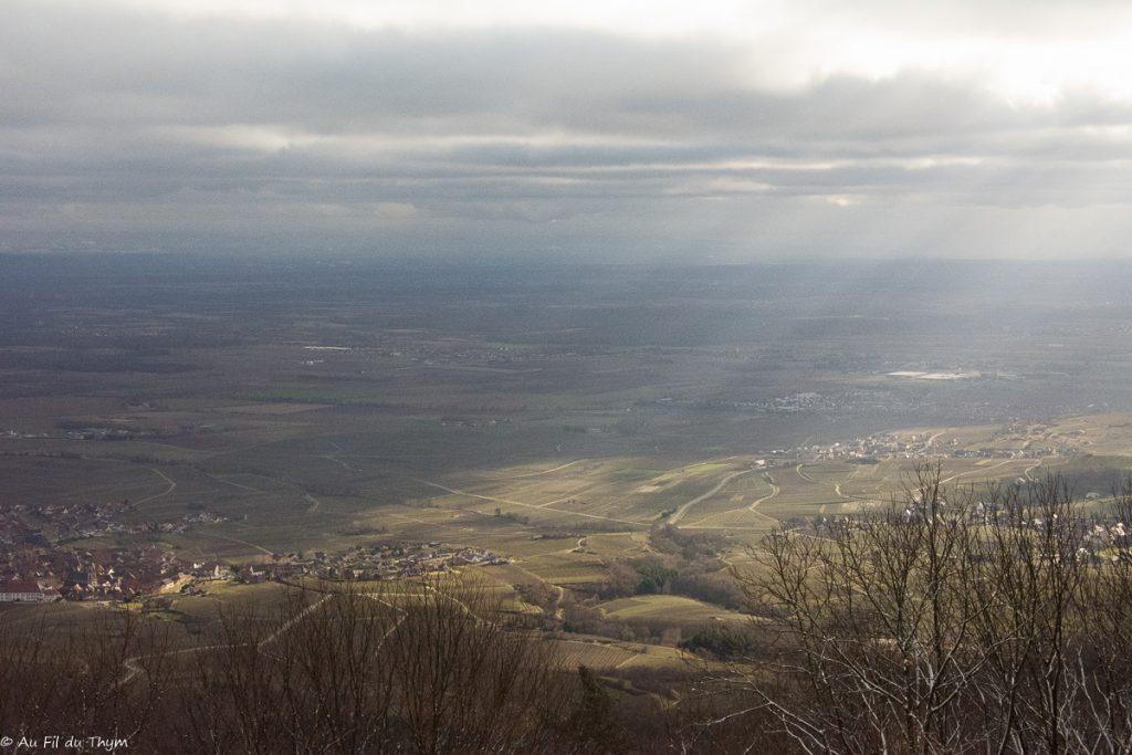 Vue sur la vallée du Rhin (12/2018)