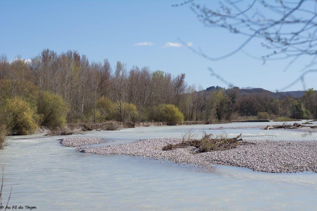 Calme Drôme à la réserve des Ramières - Au fil du Thym