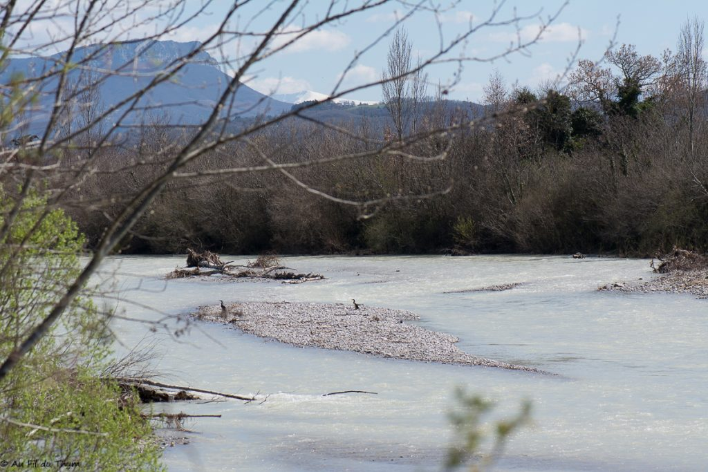 La Drôme - réserve ramièresDrôme