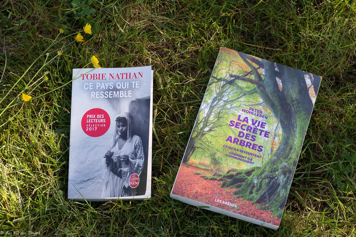 Dernières lectures #22 : Des arbres et des hommes
