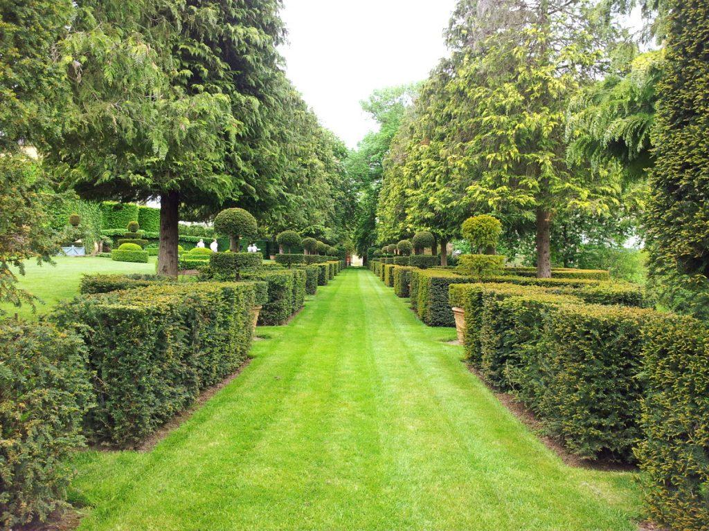 un chemin dans un parc