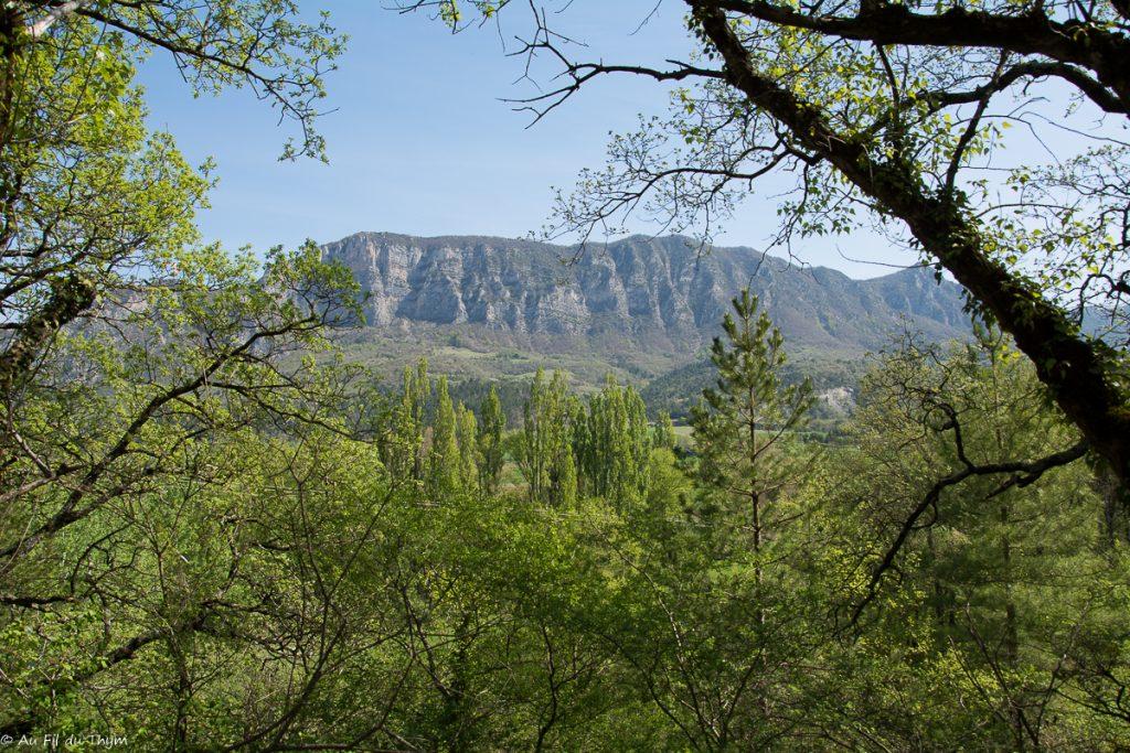 Randonnee Saou Bois Sec Vaire - descente vers les berges