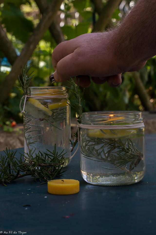 DIY répulsif moustique naturel