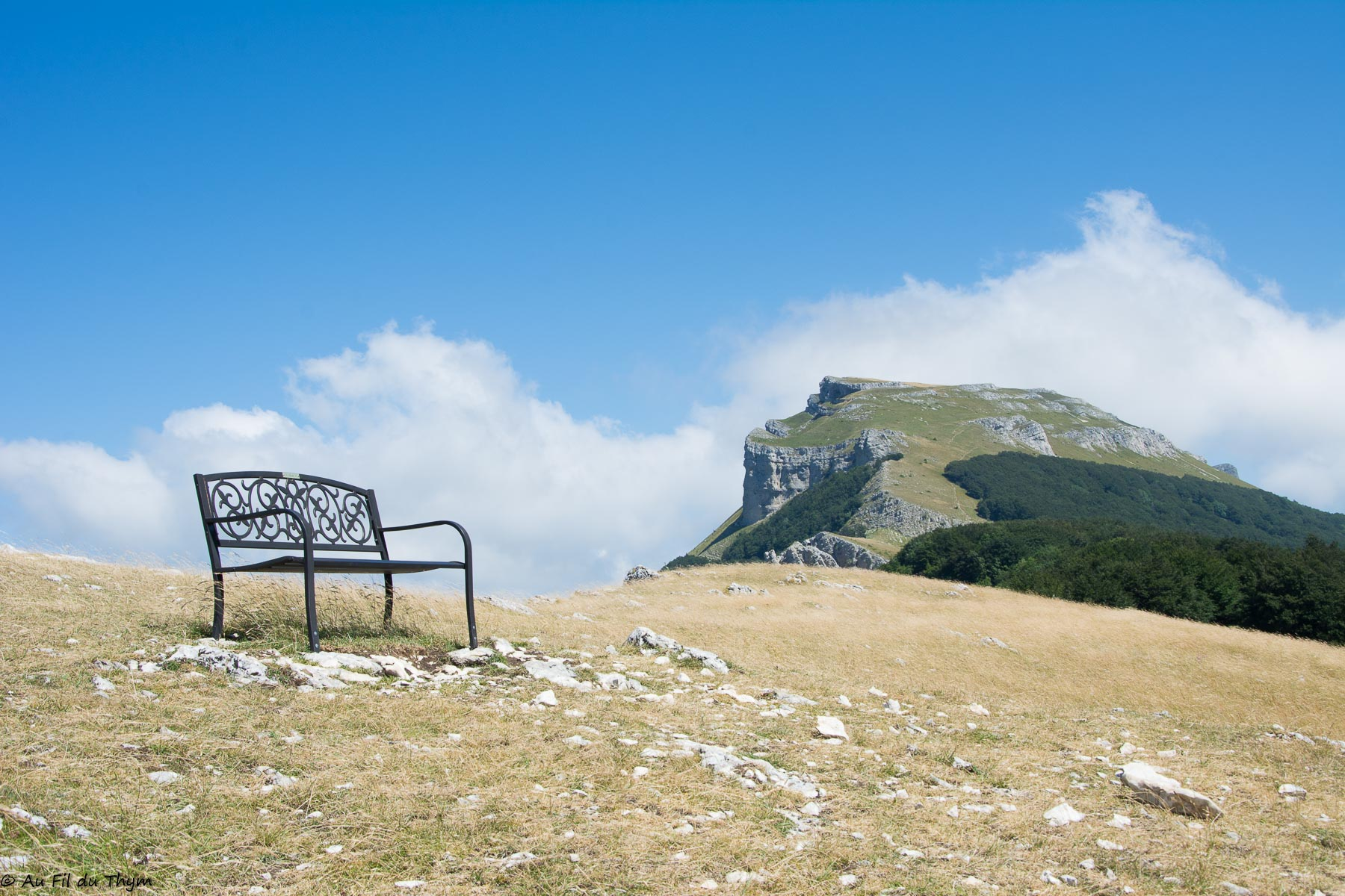 Rêver de grands espaces au plateau d'Ambel (Vercors)