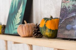 Décoration automne avec les coloquintes - Déco automne Nature