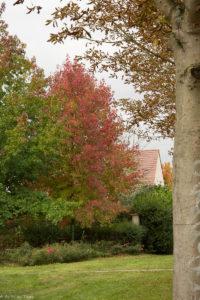 idées écolos septembre : se promener dans les parcs et jardins