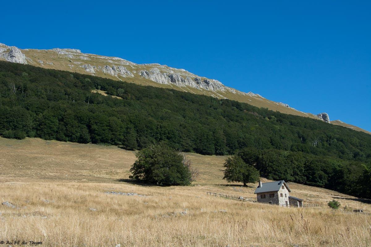 Randonnée estivale dans les Alpages d'Ambel