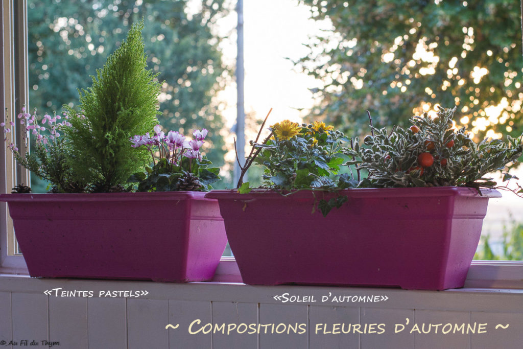 Idées Compositions fleurs automnes faciles