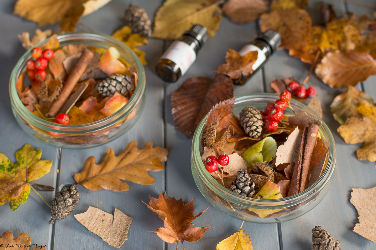 DIY – Un pot pourri d'automne (facile et naturel)