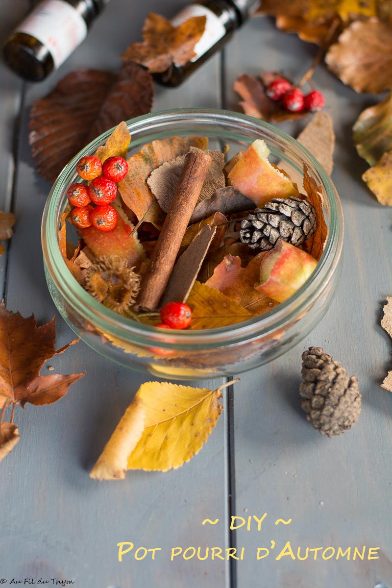 Deco D Automne Facile diy - un pot pourri d'automne (facile et naturel) - au fil