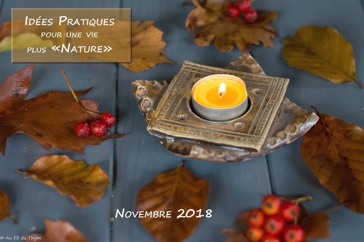 """Idées pratique pour une vie plus """"Nature"""" – Novembre 2018"""