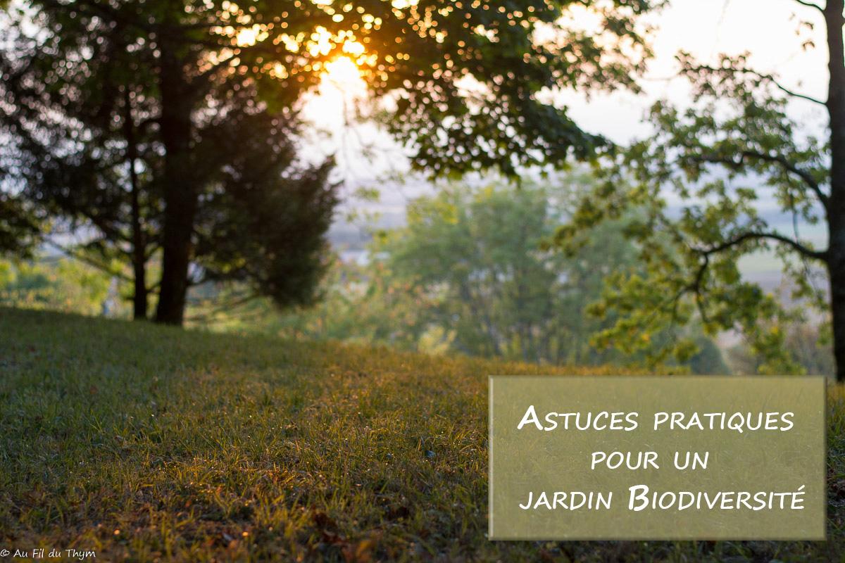 Astuces pratiques : Mon jardin pour la biodiversité