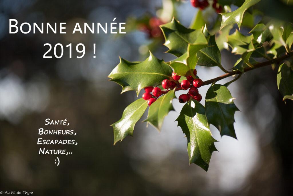 Bonne Année 2019 - Au fil du thym