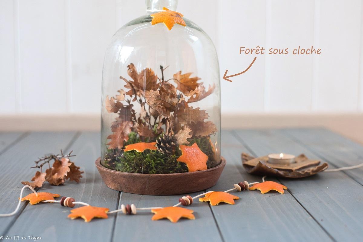 – DIY – Une Forêt sous cloche et des étoiles de clémentine pour une table de fête