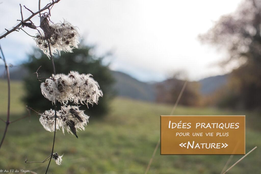 Idées pratiques lifestyle nature // Décembre 2018