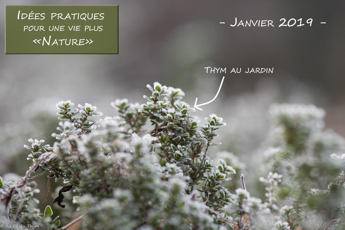 Idées pratiques pour une vie plus Nature – Janvier 2019