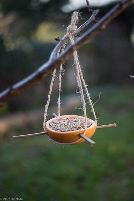 DIY :mangeoire oiseaux facile en agrumes - Au Fil du Thym