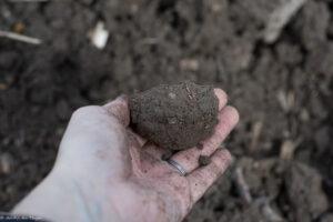 Astuces potager débutant : tester sa terre en réalisant un boudin