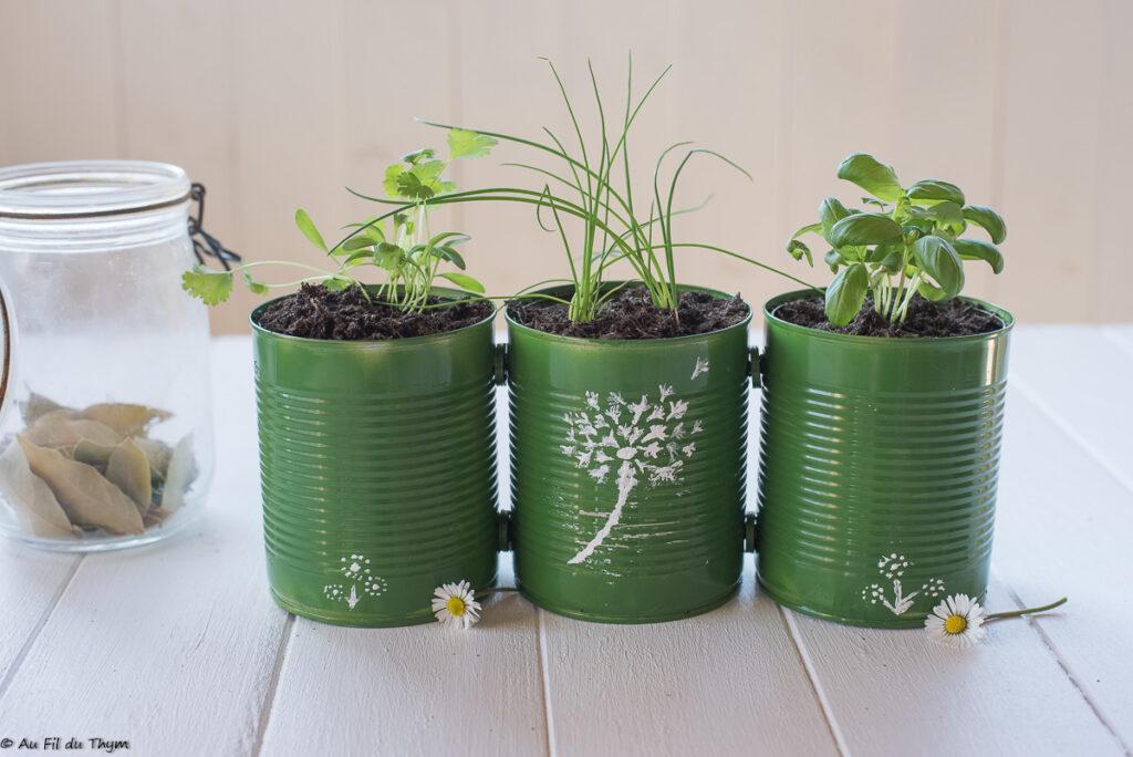 DIY / Tutoriel - Jardin aromatique d'intérieur