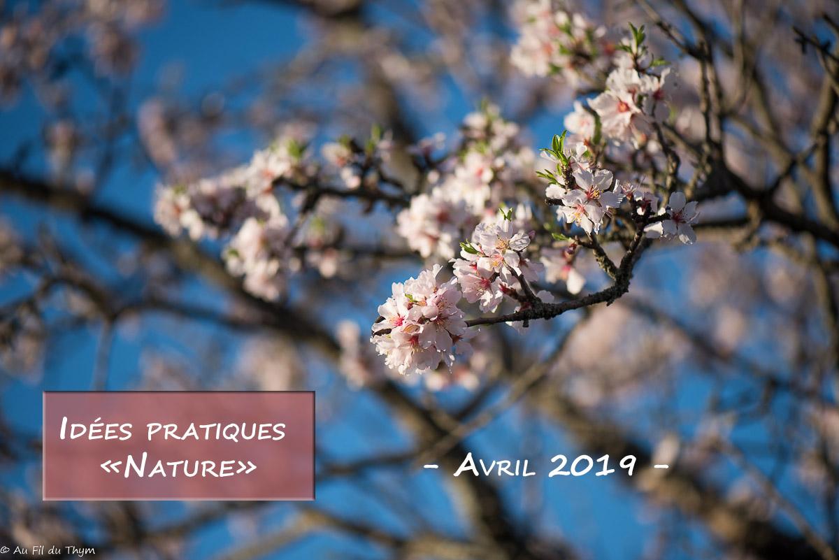 Petites idées écolos du mois – Avril 2019