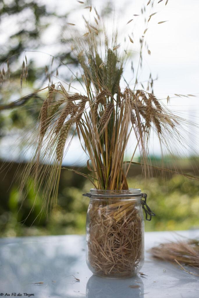 Idées bouquets de blés pour l'été