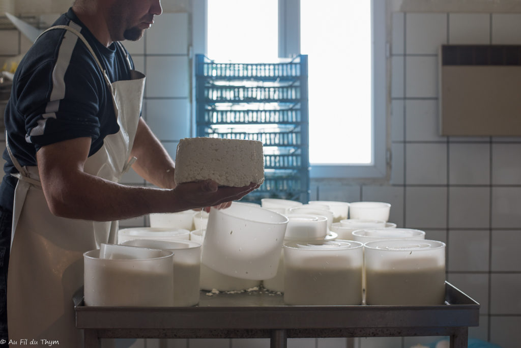 Réalisation des tomes / Vis ma vie d'exploitant bio fromager éleveur