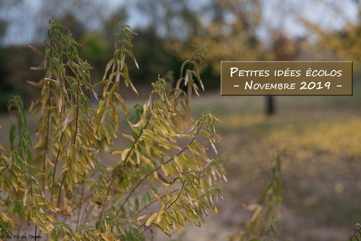Petites idées écolos du mois – Novembre 2019