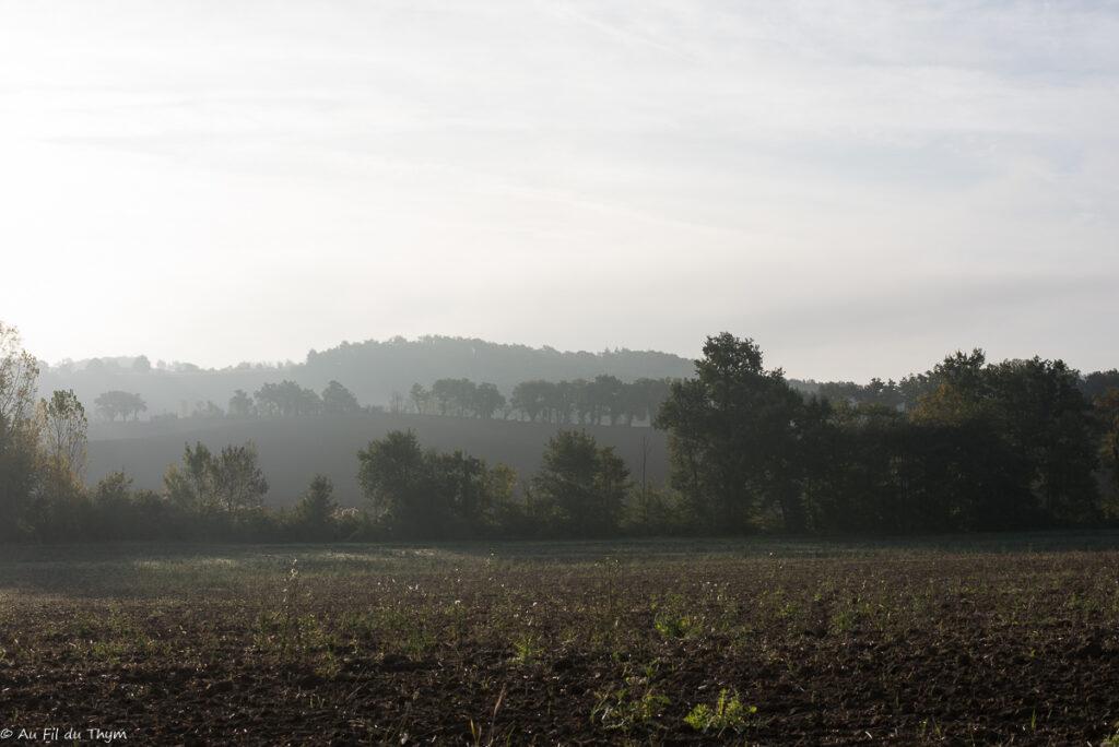 Ecole buissonière Polastron - chemin de promenade du Gers