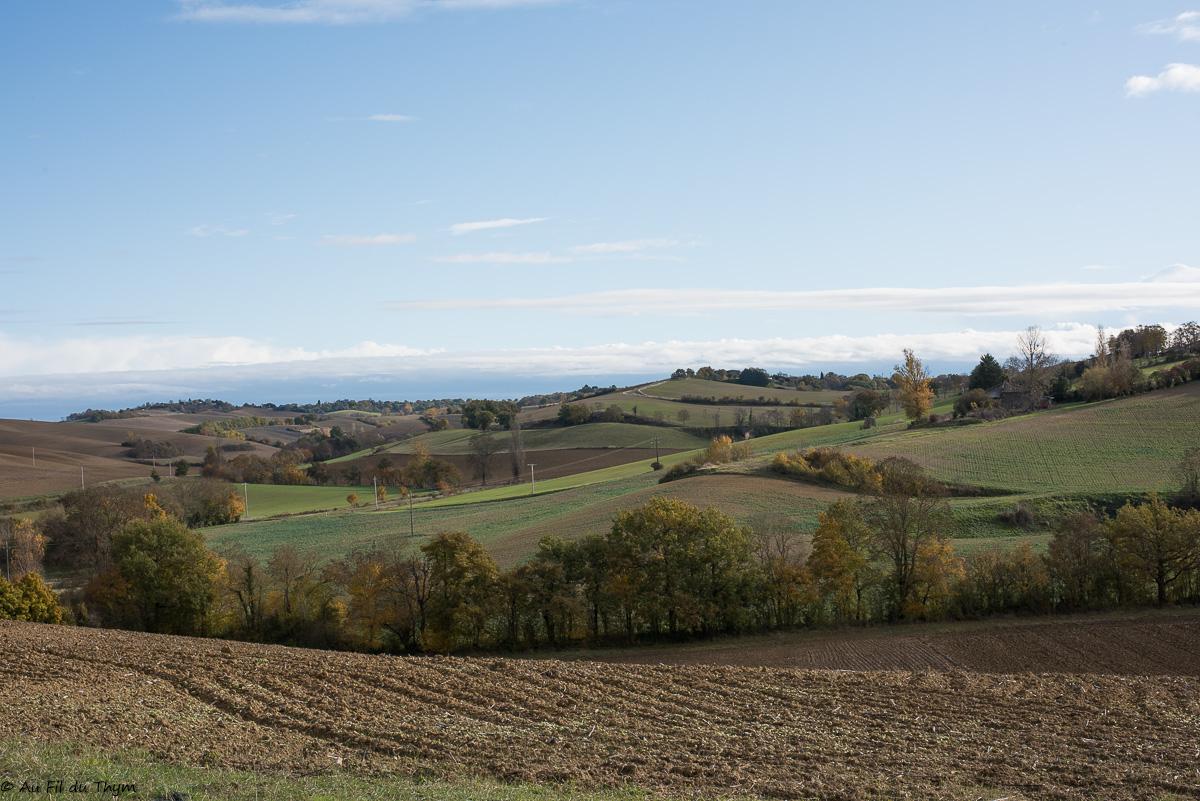 Couleurs d'automne dans le Gers