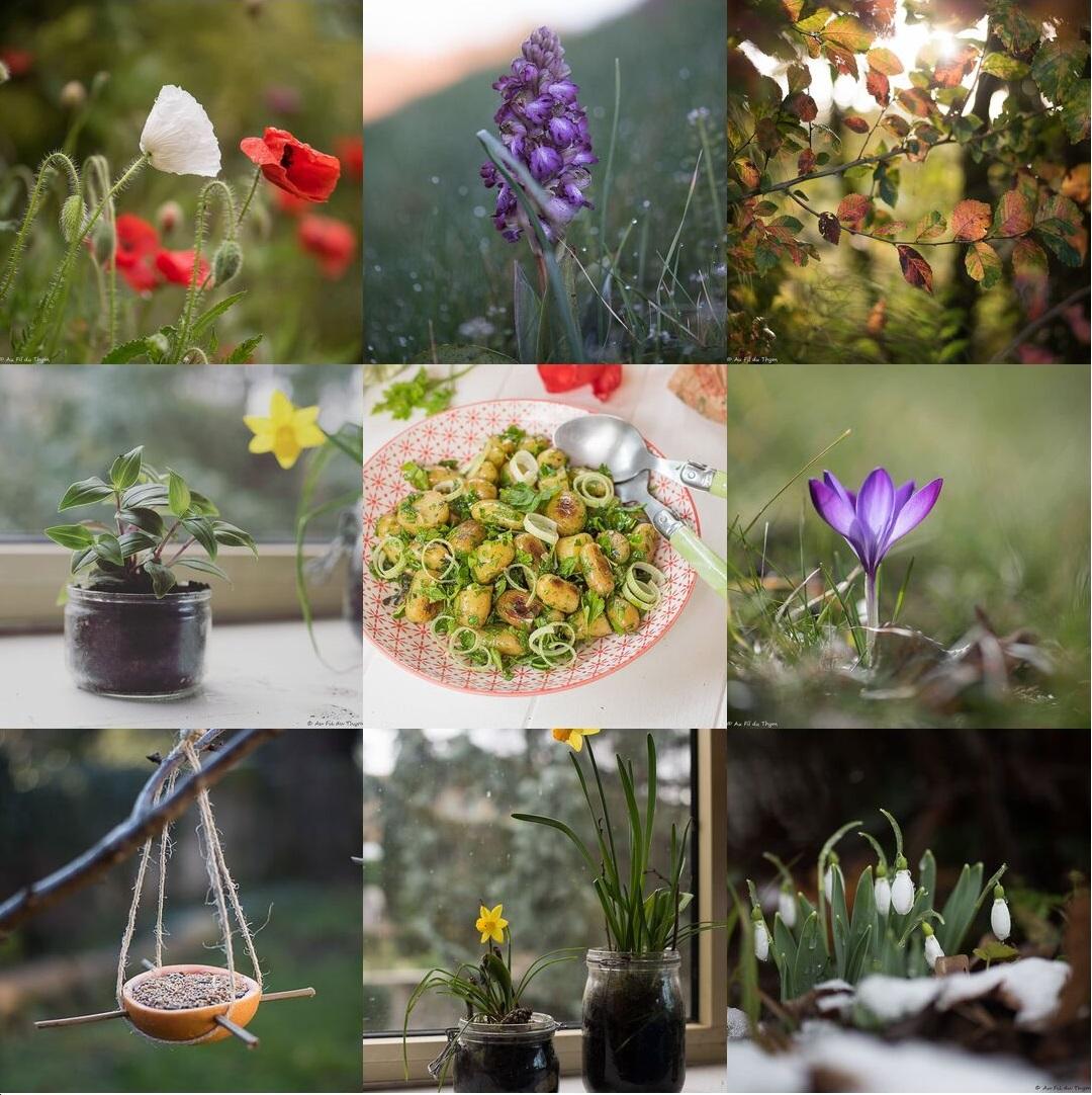 Rétrospective : Petits Bonheurs 2019