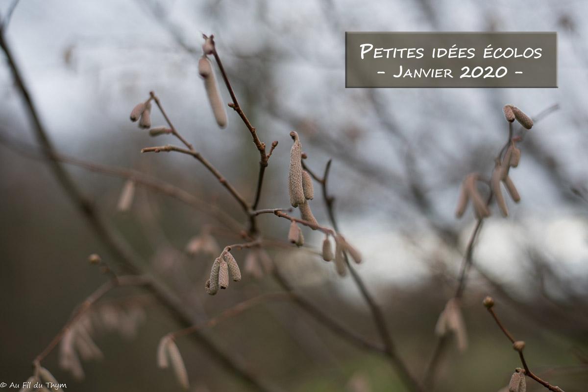 Petites idées écolos du mois – Janvier 2020 –