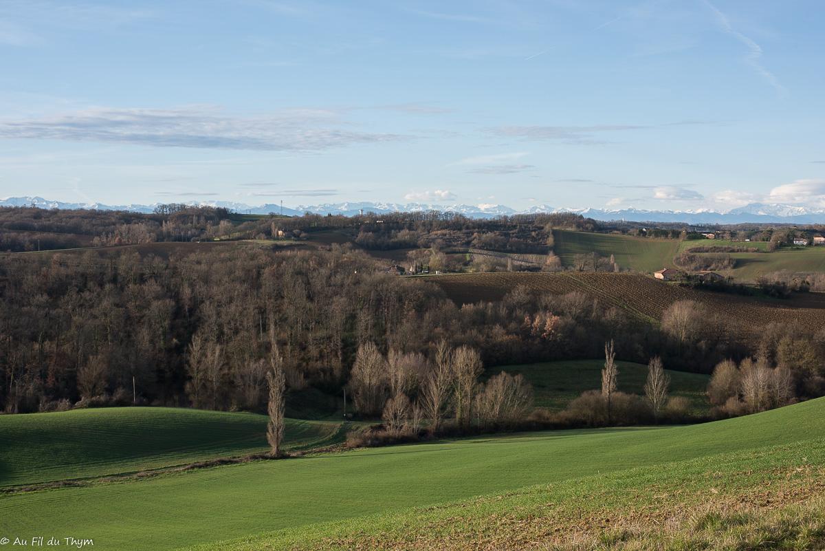 Balade avec vue Pyrénées