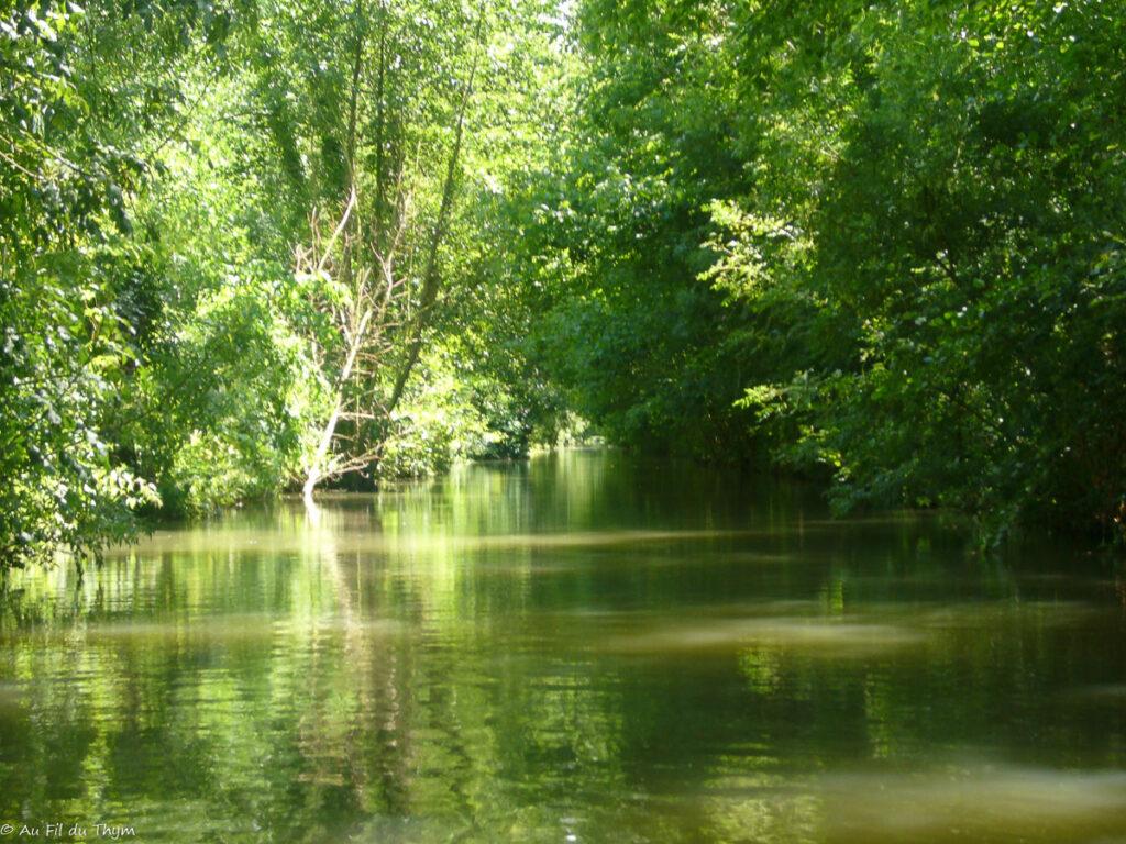 destinations vacances été peu prisées: Le marais poitevin
