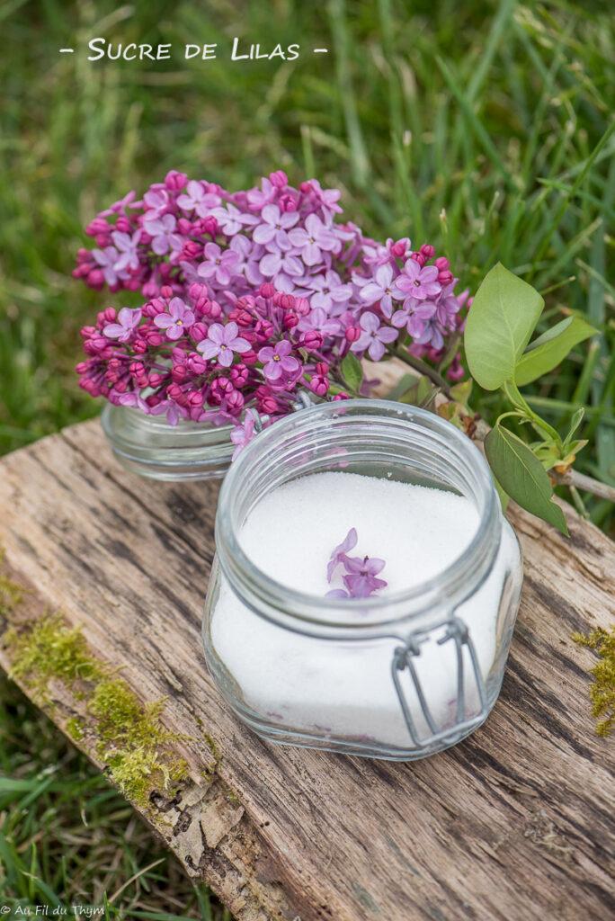 Sucre de lilas - Au Fil du Thym