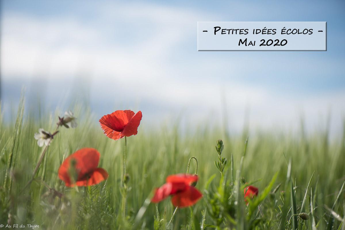Petites idées écolos du mois – Mai 2020 –