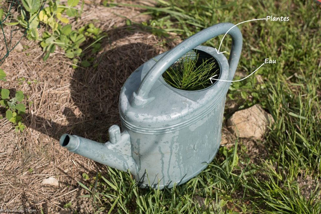 Traitements naturels potager : Réaliser des purins