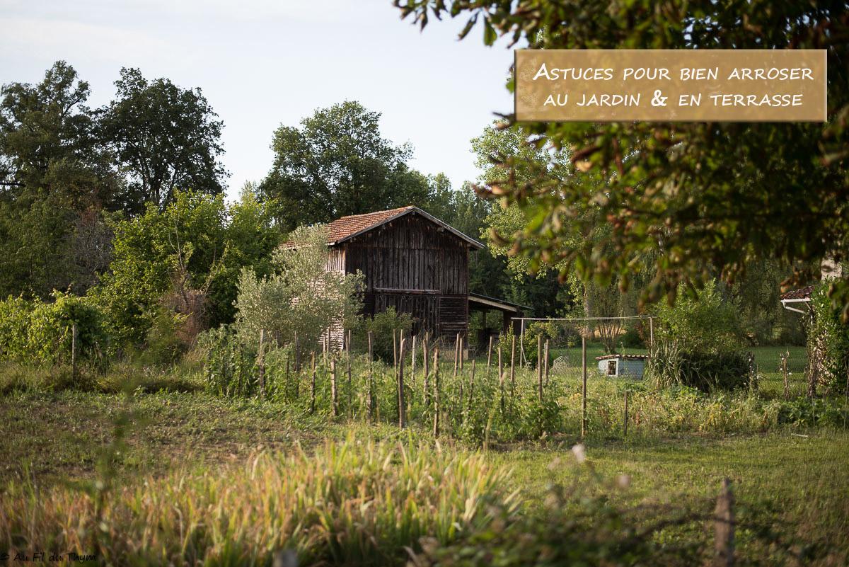 8 Astuces pour bien arroser (jardin & terrasse)